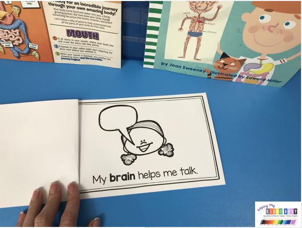 all about my brain kindergarten