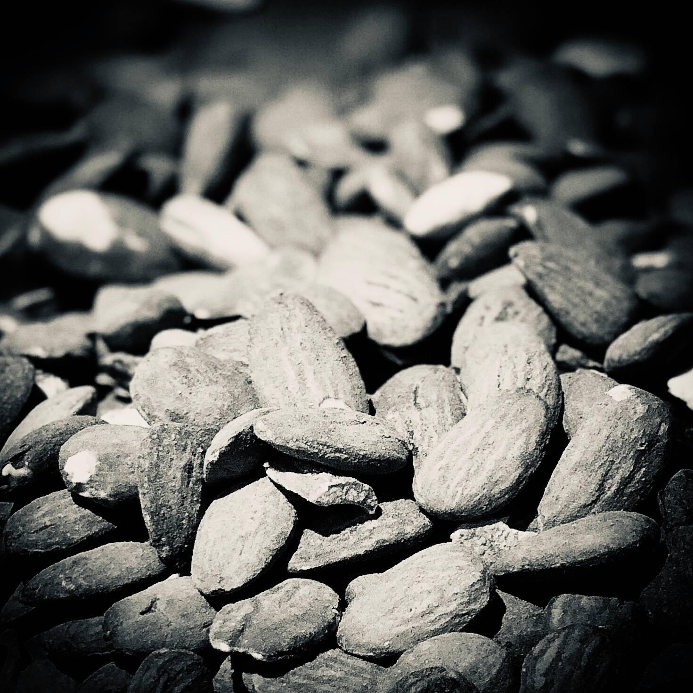B&W almonds.jpg