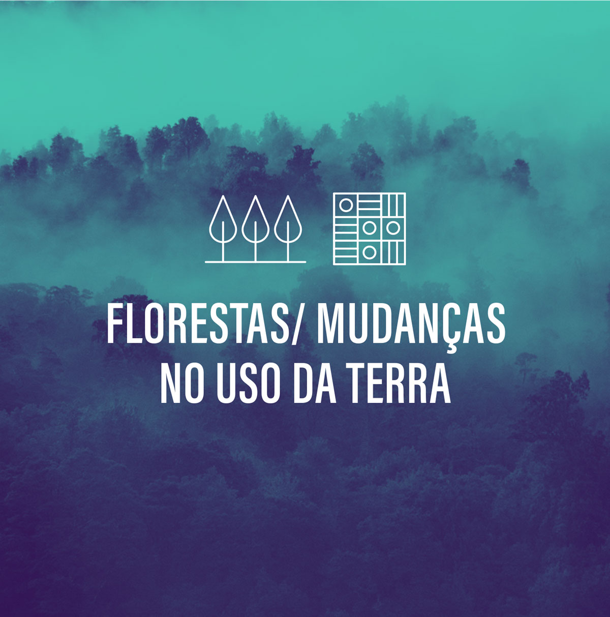 Florestas / Mudanças no Uso da Terra