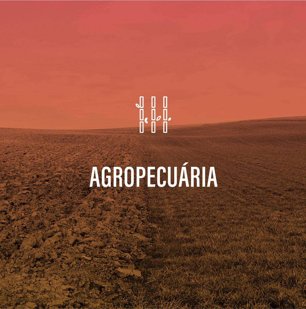 Agropecuária