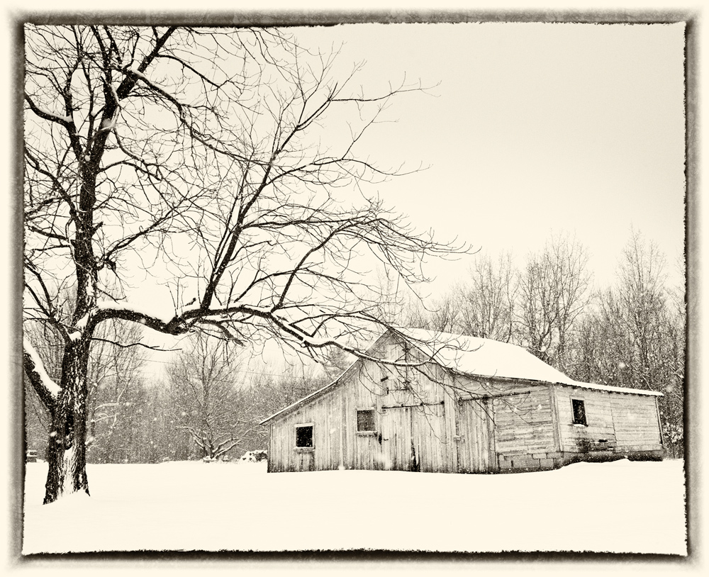 Abandoned-Barn-5.jpg