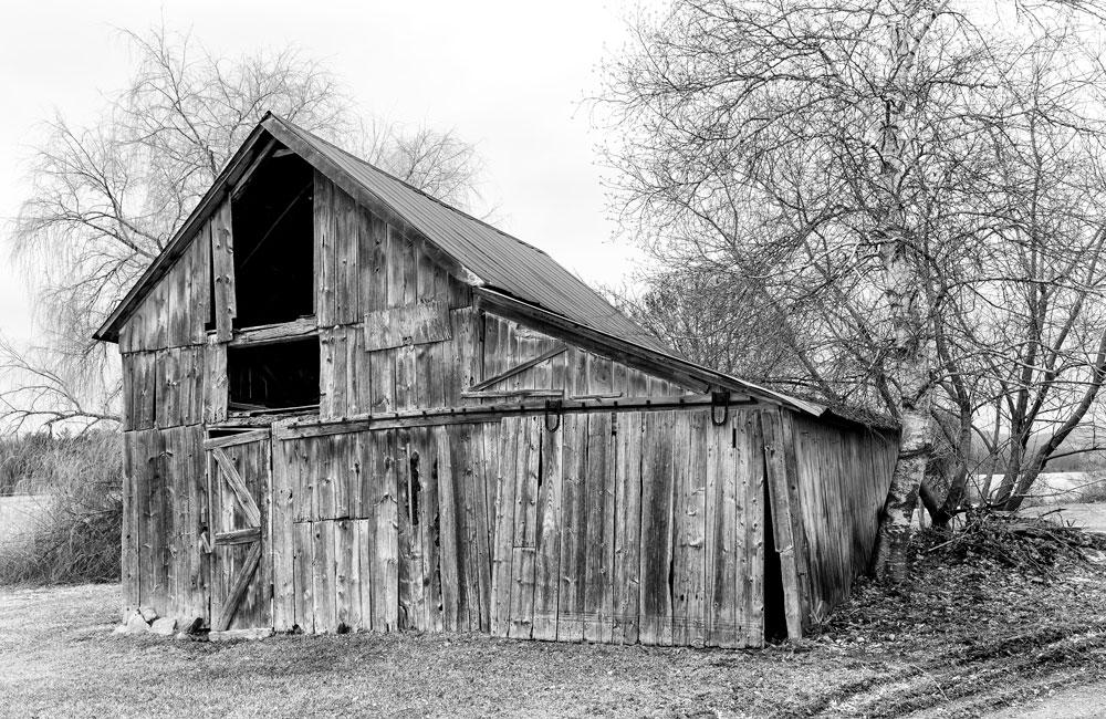 Abandoned-1.jpg