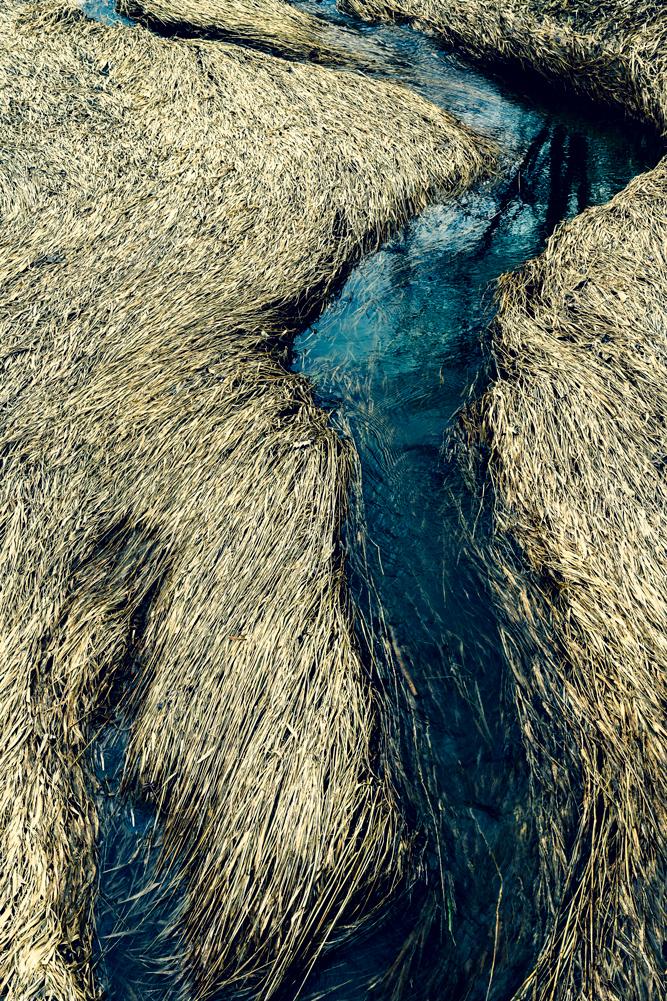 Water-6-(2).jpg
