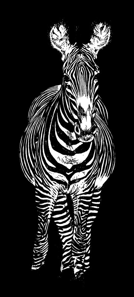 zebra1.png