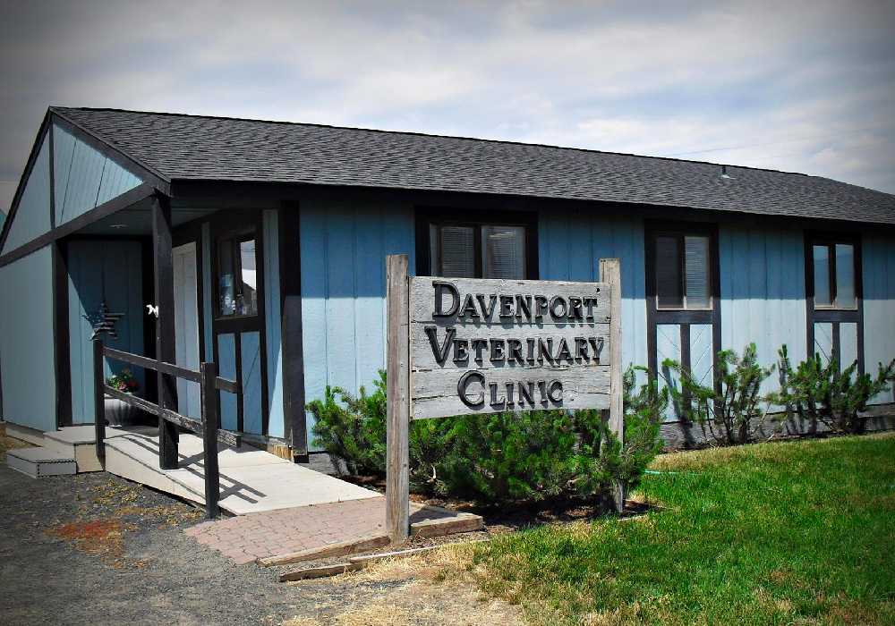 Davenport Veterinary Clinic - 1202 Monroe St Davenport, WA 99122(509) 725-7448www.facebook.com/Davenport-Veterinary-Clinic
