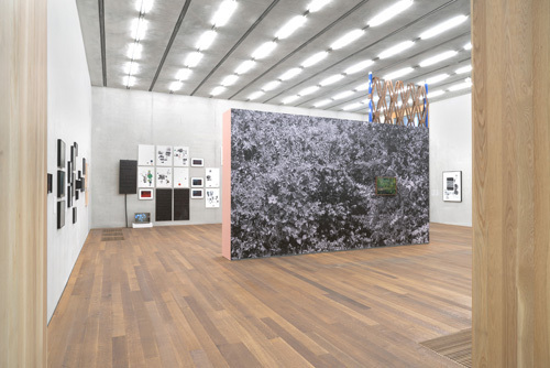 Adler Guerrier - Artforum