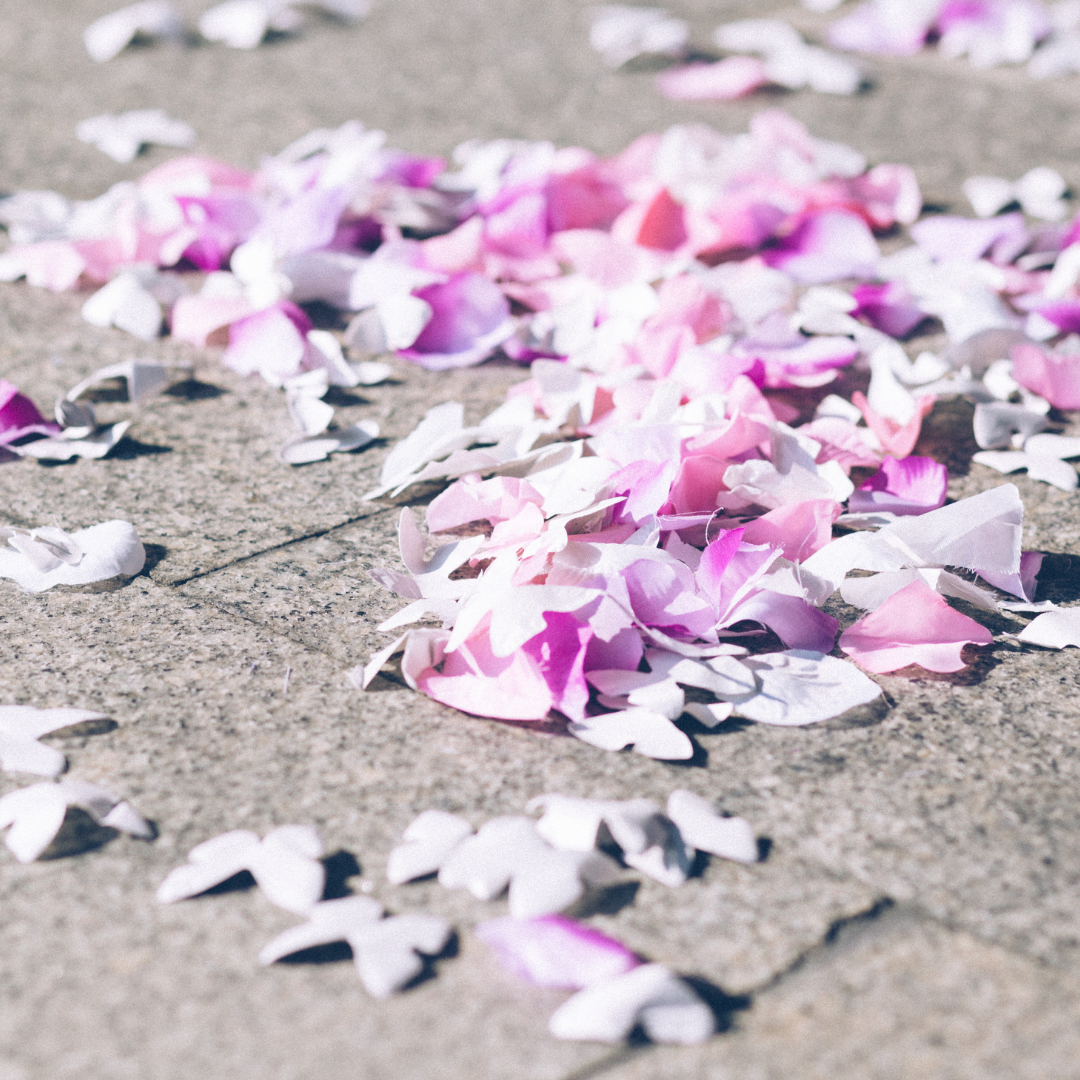 Biodegradable Flower Petal Confetti.png