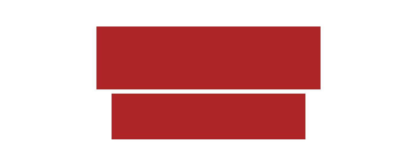 Future Faces logo.png