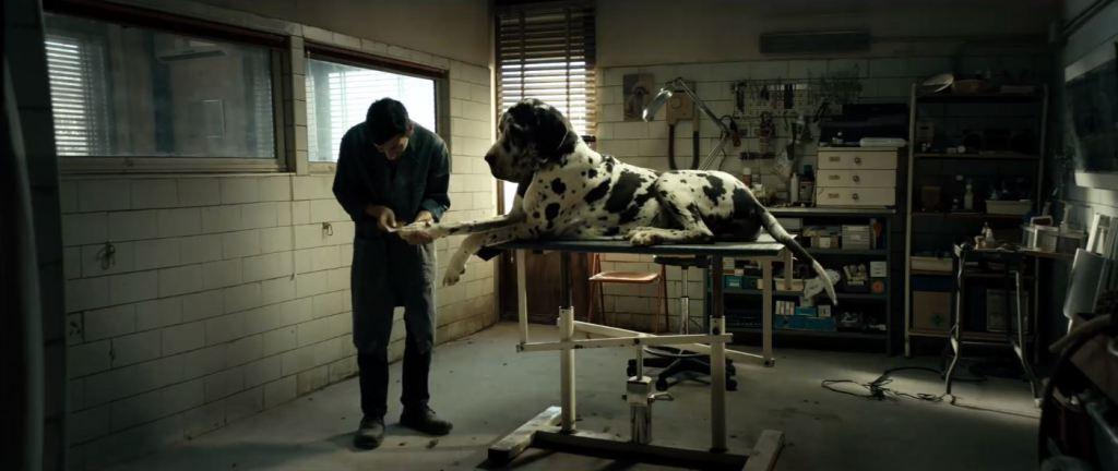 dogman-movie-four.jpg