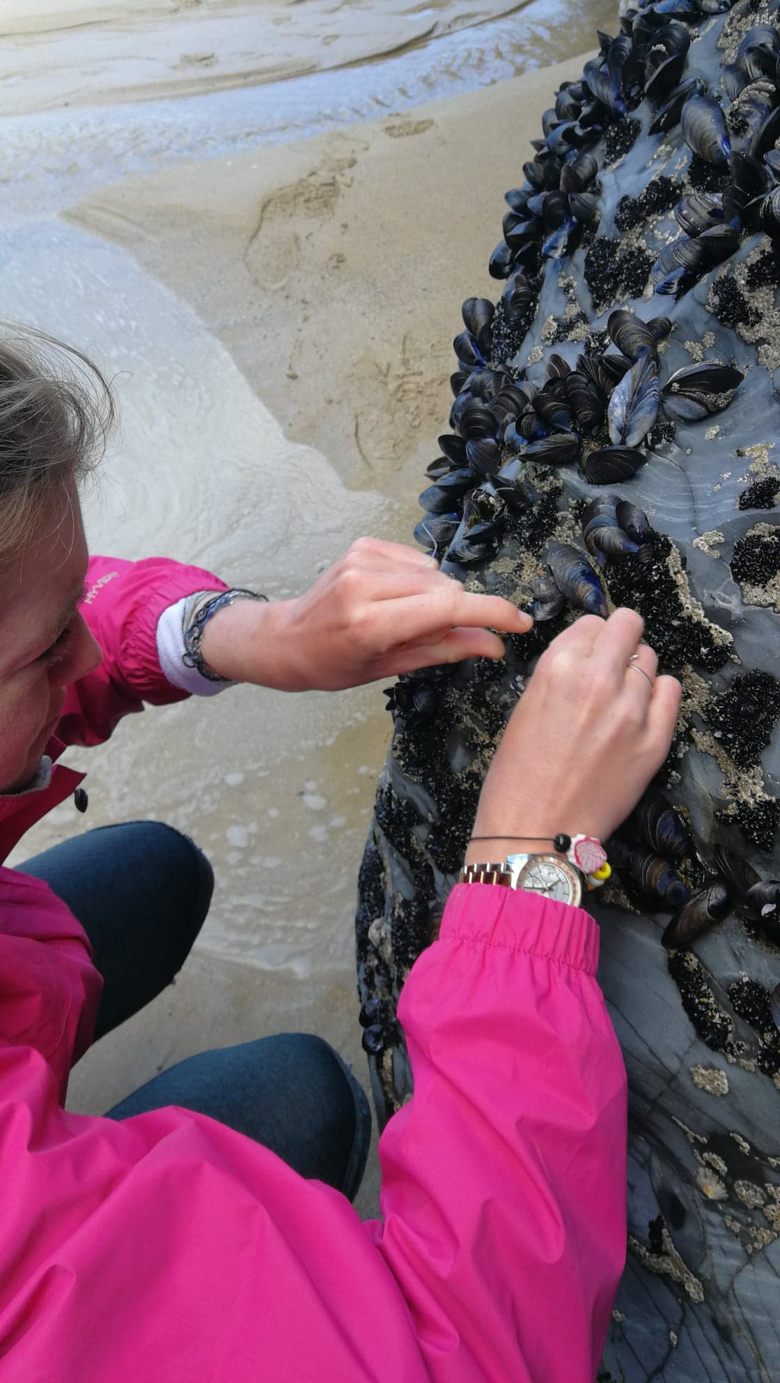 """Plastic is an epidemic, a poison spreading across the world with no antidote"" - <- Image: Attempting to remove fishing line from a mussel bed"