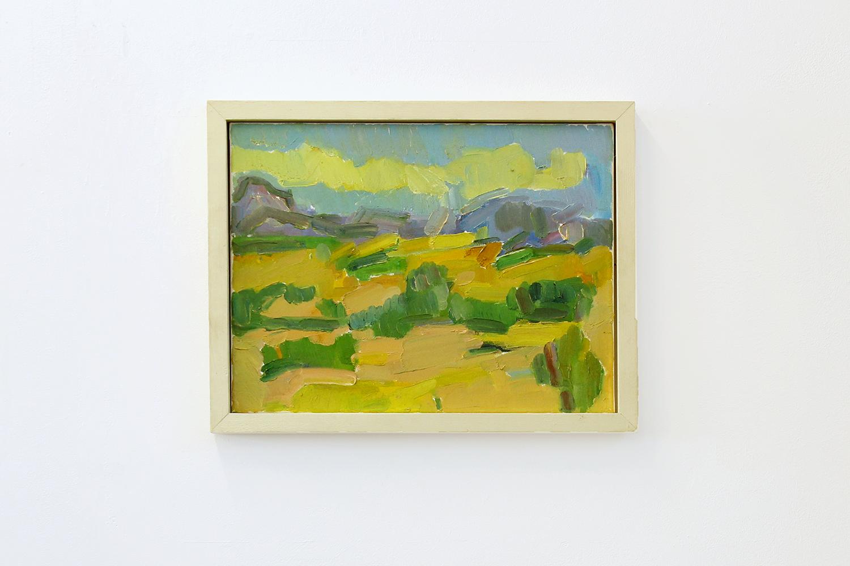 Pec du Bugarach and the Fields