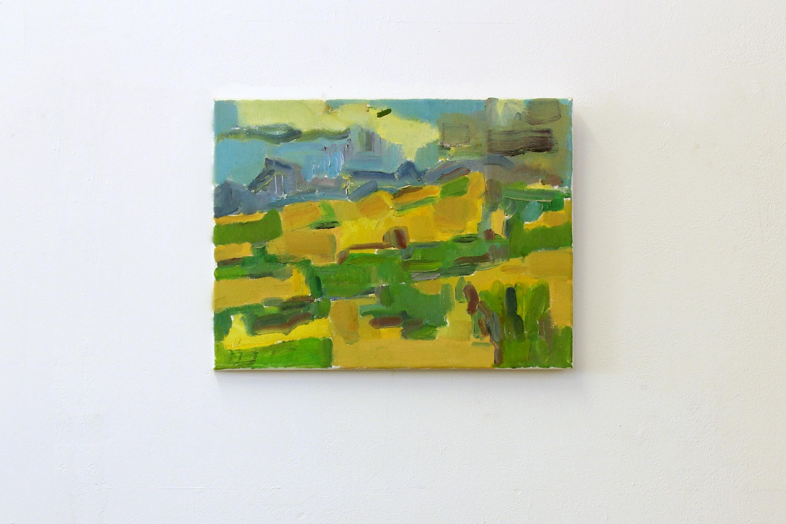 Fields and the Pec du Bugurach (Summer)