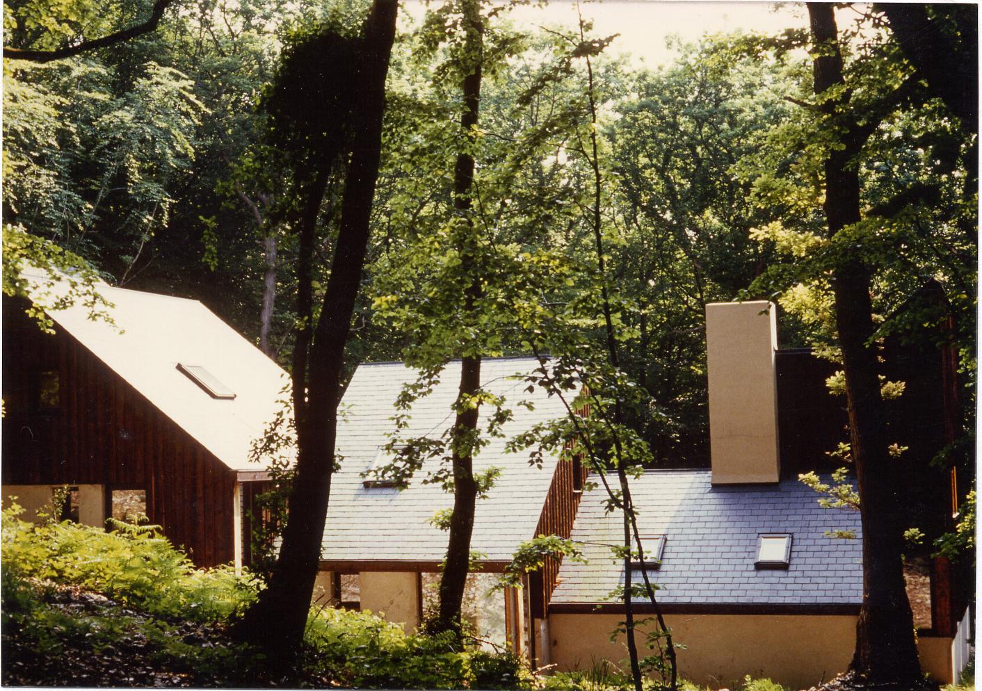 Brauner 02.jpg