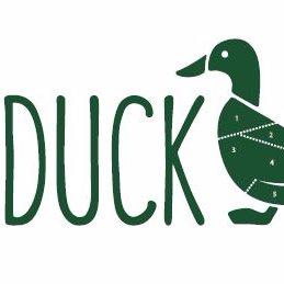 Mr Duck.jpg