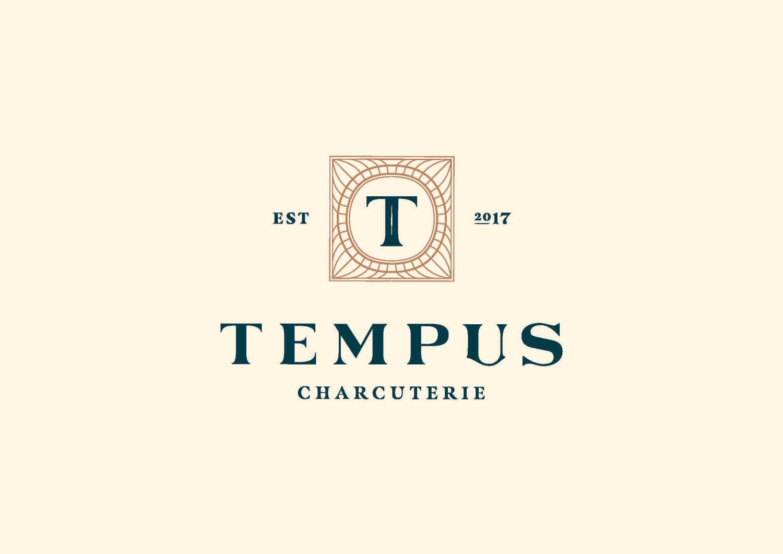 Tempus_Primary-Logo_Colour-CMYK-optimised.jpg