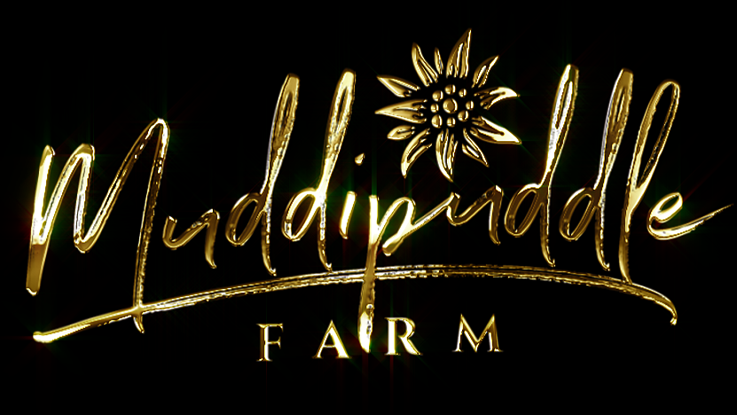 MUDDIPUDDLE FARM LOGO 1.png