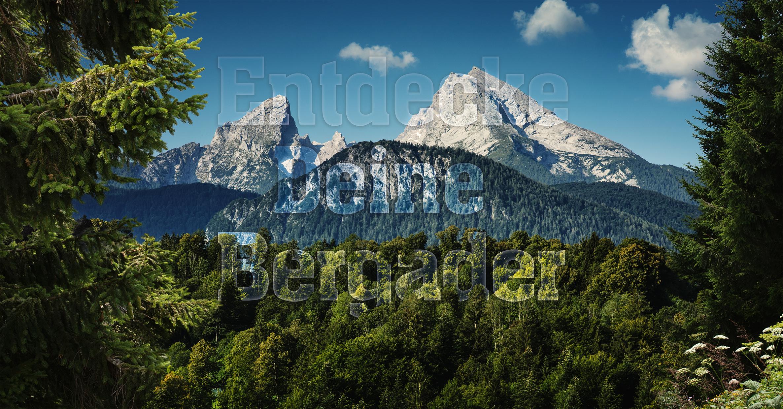 Bergader_Watzmann_Logo_Typo_ohne_Logo.jpg