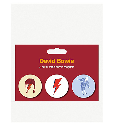 David Bowie Magnets