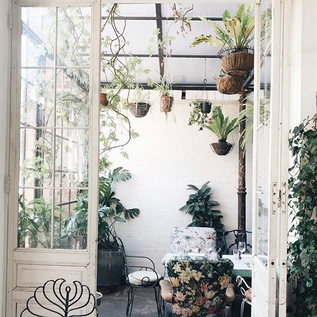 @mad_about_the_house beautiful shot 📸 of the greenhouse! Happy Friday everyone! Super happy for a long weekend of sunshine, cocktails and brunch 😋