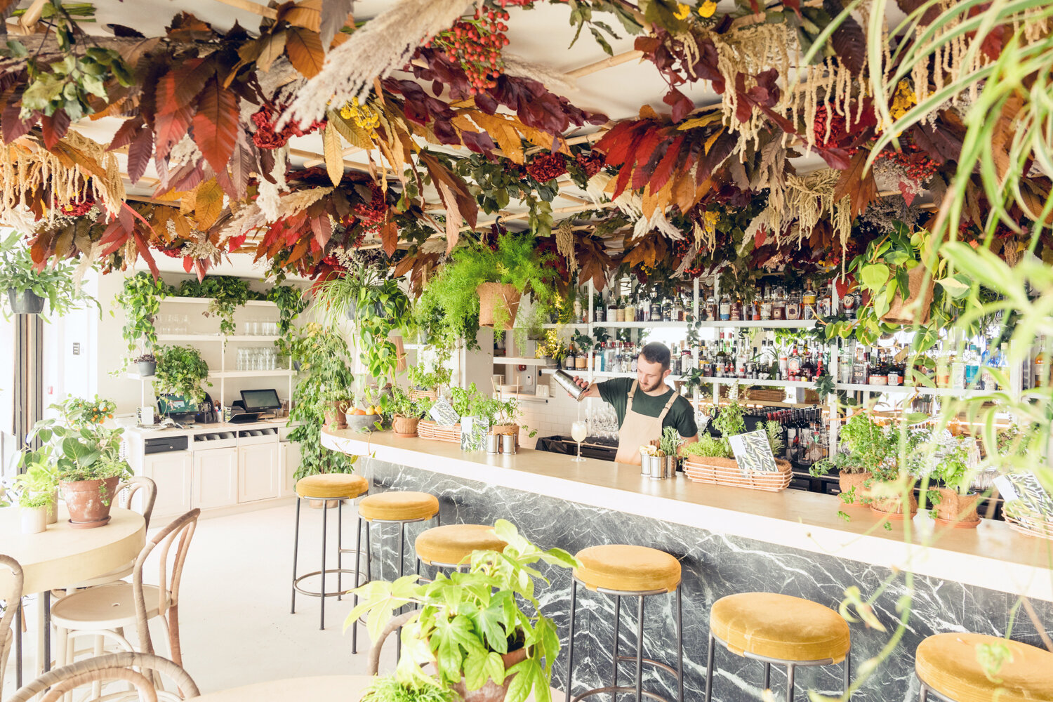 A/W 19 Installation - An ode to the seasons - become immersed in our stunning new installation