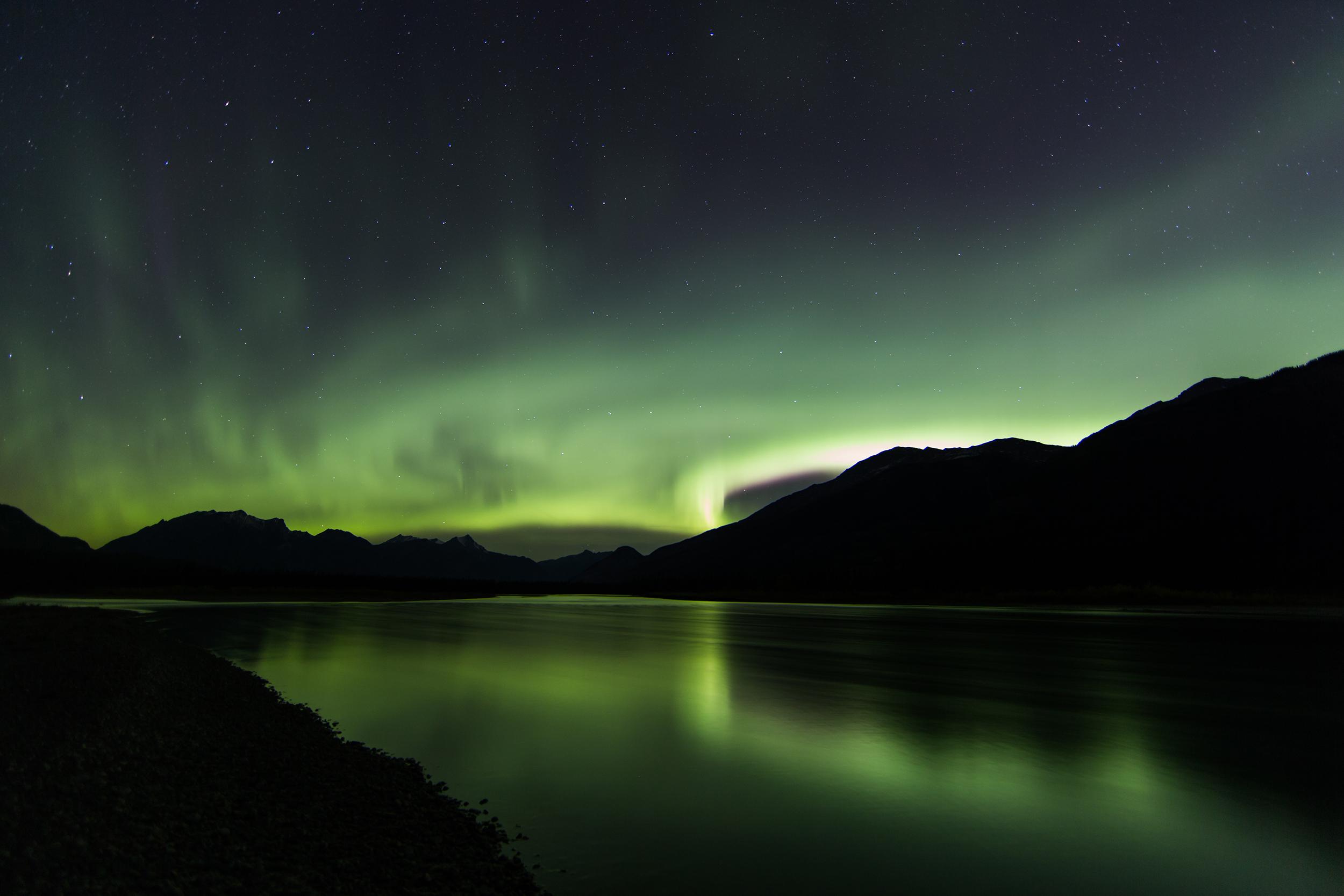 Palisade Auroras