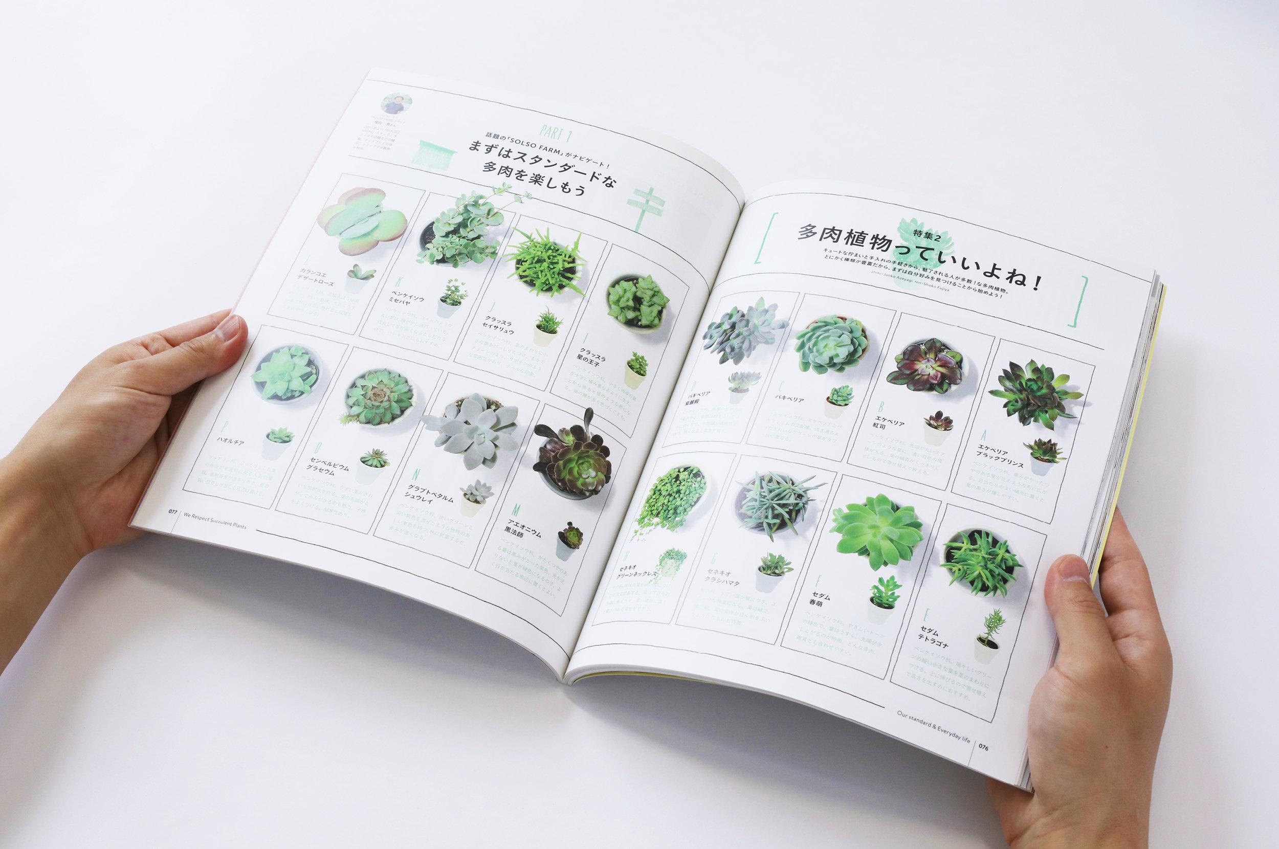 stylebook22.jpg