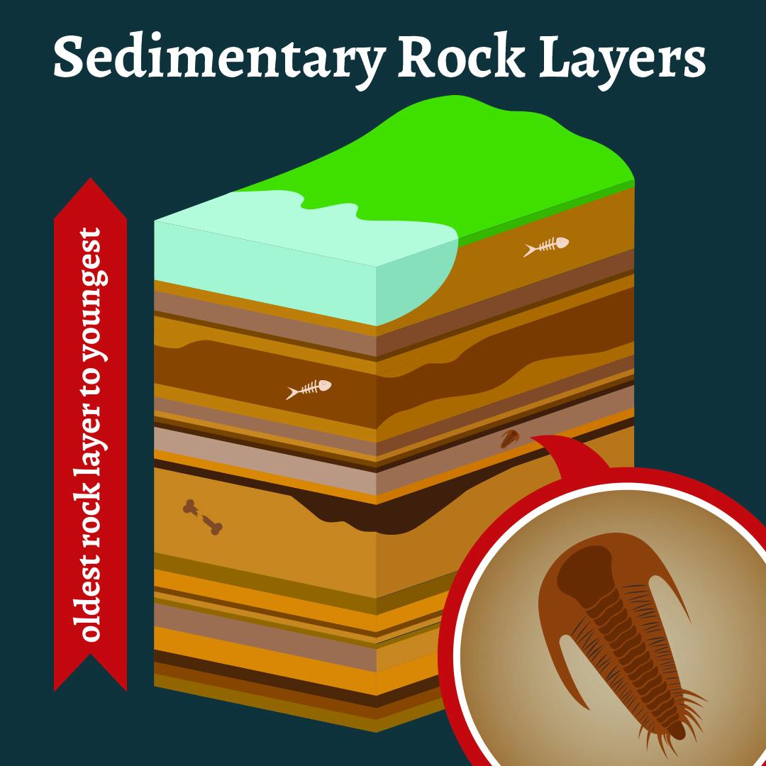 Rock Layers.jpg