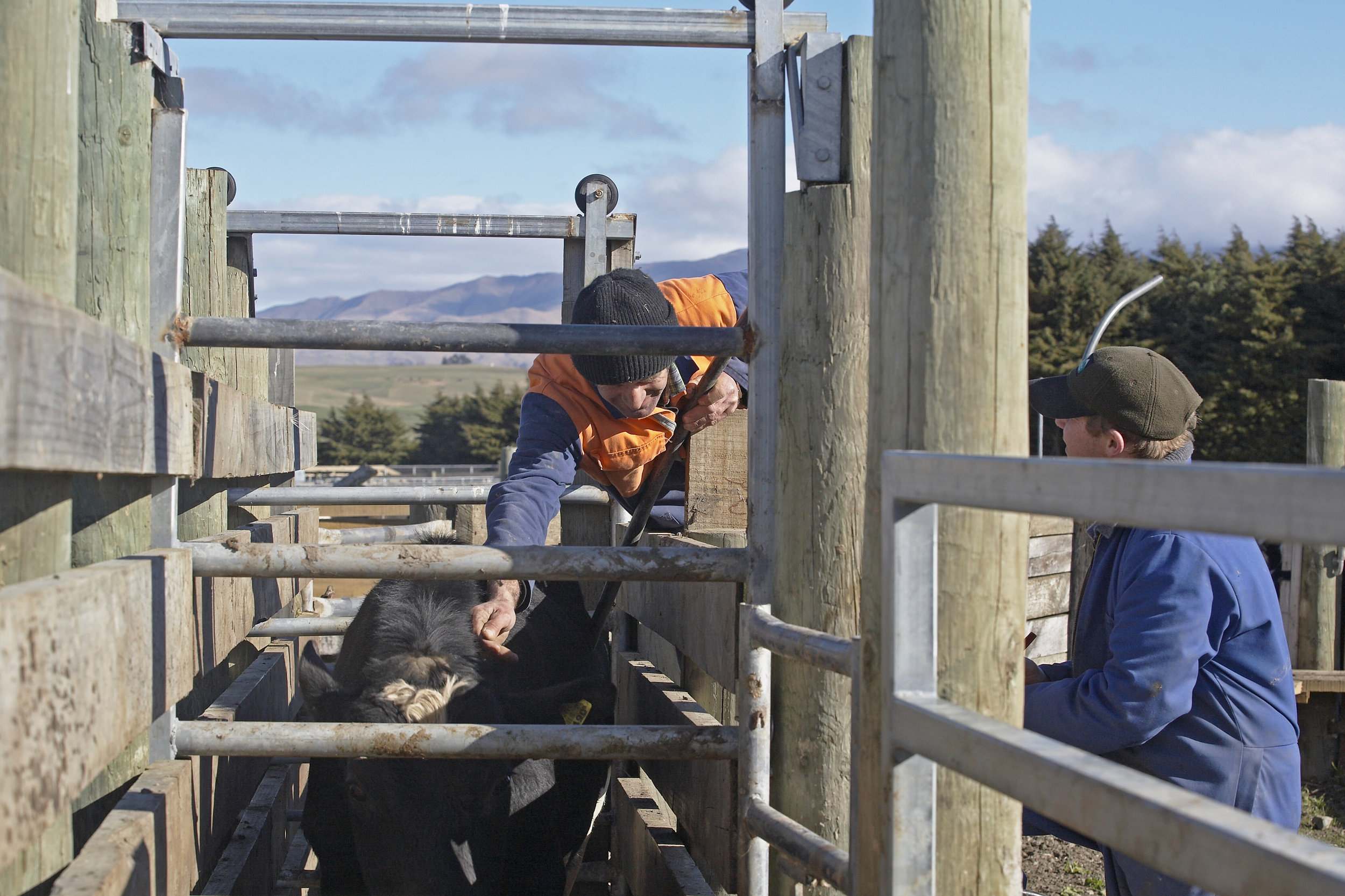 Craigmore Farm.jpg