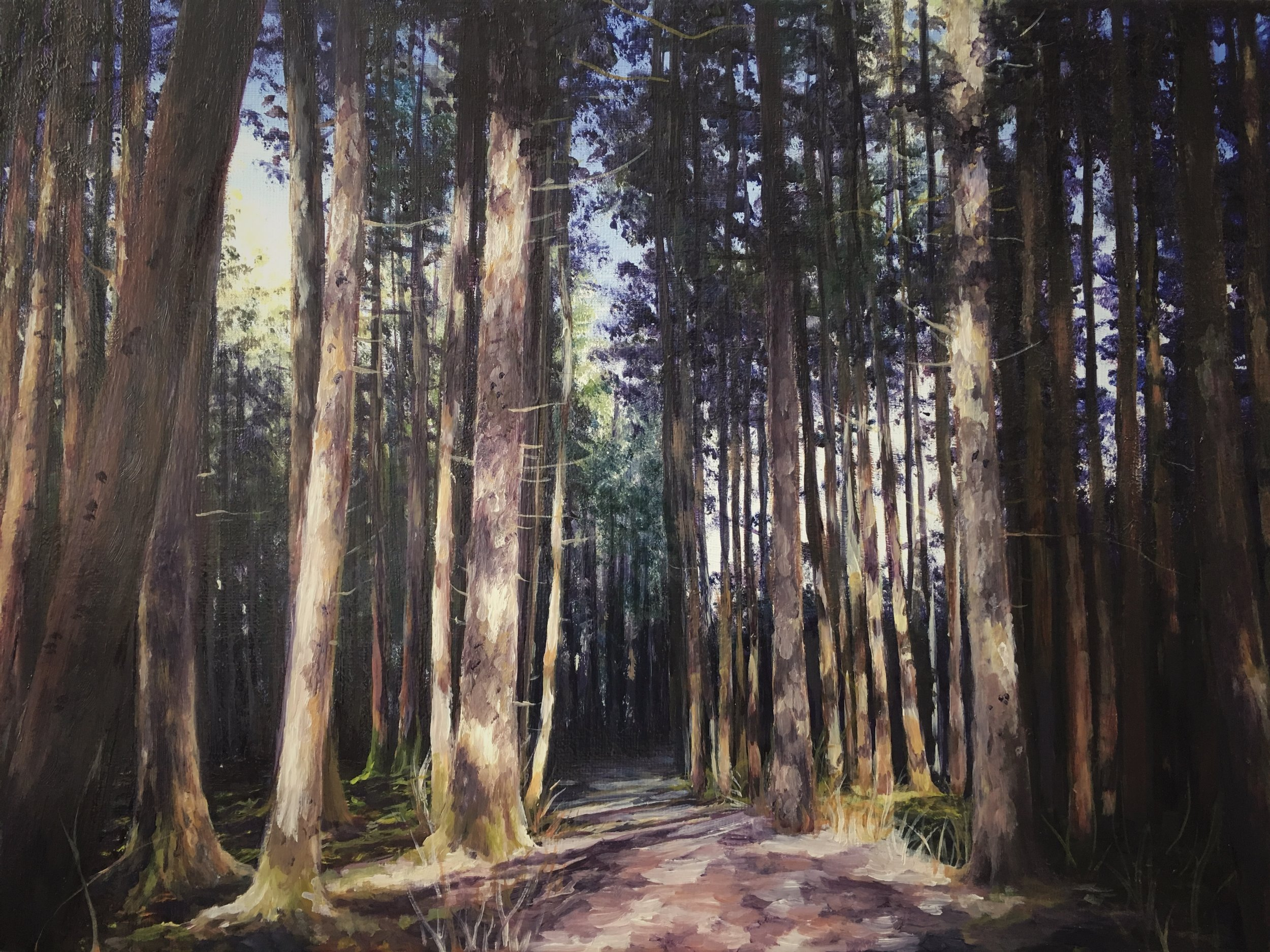 008 Rainbow Forest (Oil on canvas).jpg