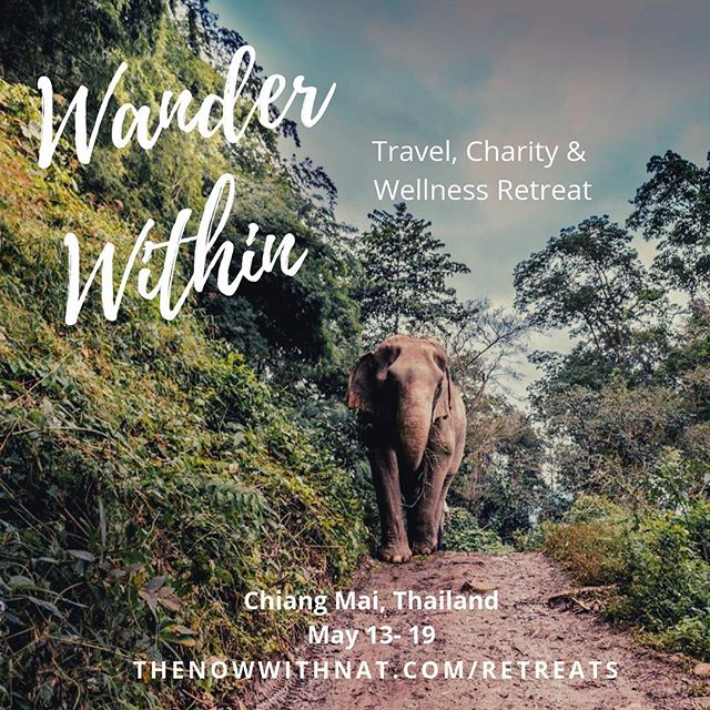 "Calling all world travelers and spirit junkies✨ Are you ready to transform (from the inside out) during a phenomenal 7-day, 6-night travel, wellness, and charity retreat?!! ⠀ If so, please join @thenowwithnat & @venturewithimpact this May in Chiang Mai, Thailand for the ""Wander Within"" retreat💫 ⠀ ⠀ As a proud partner, I'm excited to offer my tribe $150 off the total ticket price. Just use promo code: CARRUTH150 in the ""How Did You Hear About The Retreat"" field on the registration page and save today! Link in bio ↠ ⠀ We look forward to seeing you there! * * * * * * * * * #seetheworld #wanderlust #southeastasia #travelgal #nomadlife #thailand #chiangmai #retreats #lonelyplanet #seetheworld #instatravel #instashot #passionpassport #traveltheworld#spirituality #globetrotter #gopro #girlstravelgo #passionpassport #meditation #yogainthailand #yogaretreat #adventureretreat #meditationretreat #charityretreat#travelwithpurpose #hikingtheglobe #thenowwithnat #venturewithimpact"