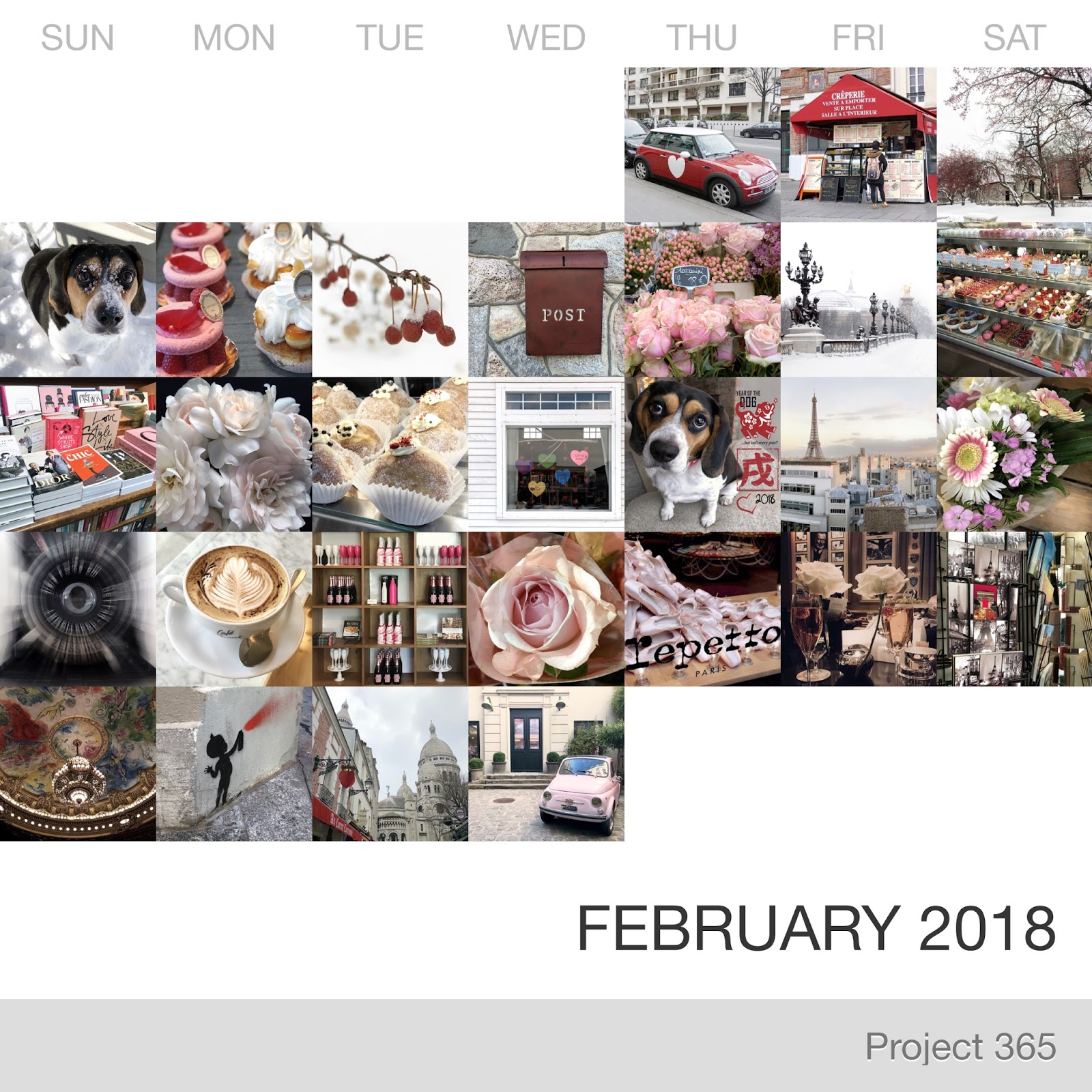 Project 365 _February-2018_Collage.jpg