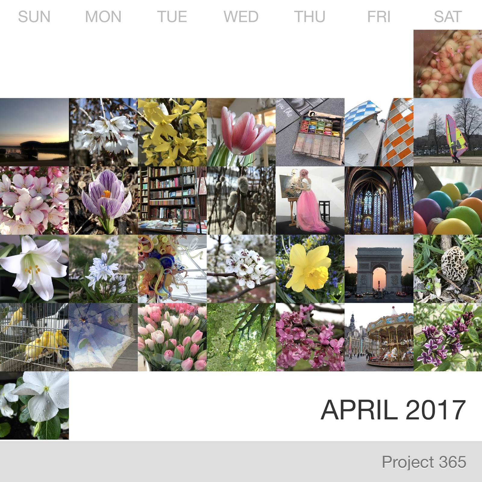 Project 365 _April-2017_Collage.jpg