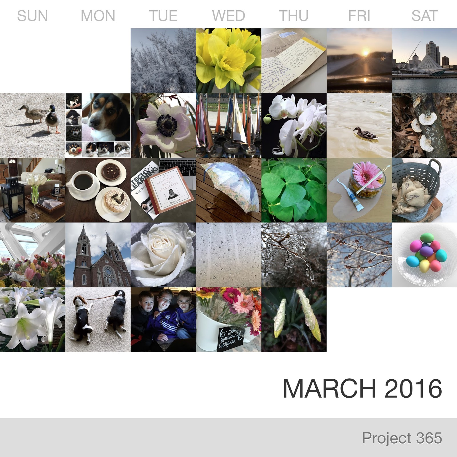 Project 365 _March-2016_Collage.jpg