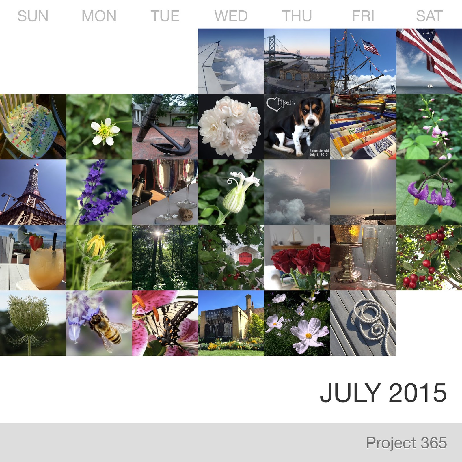 Project 365 _July-2015_Collage.jpg
