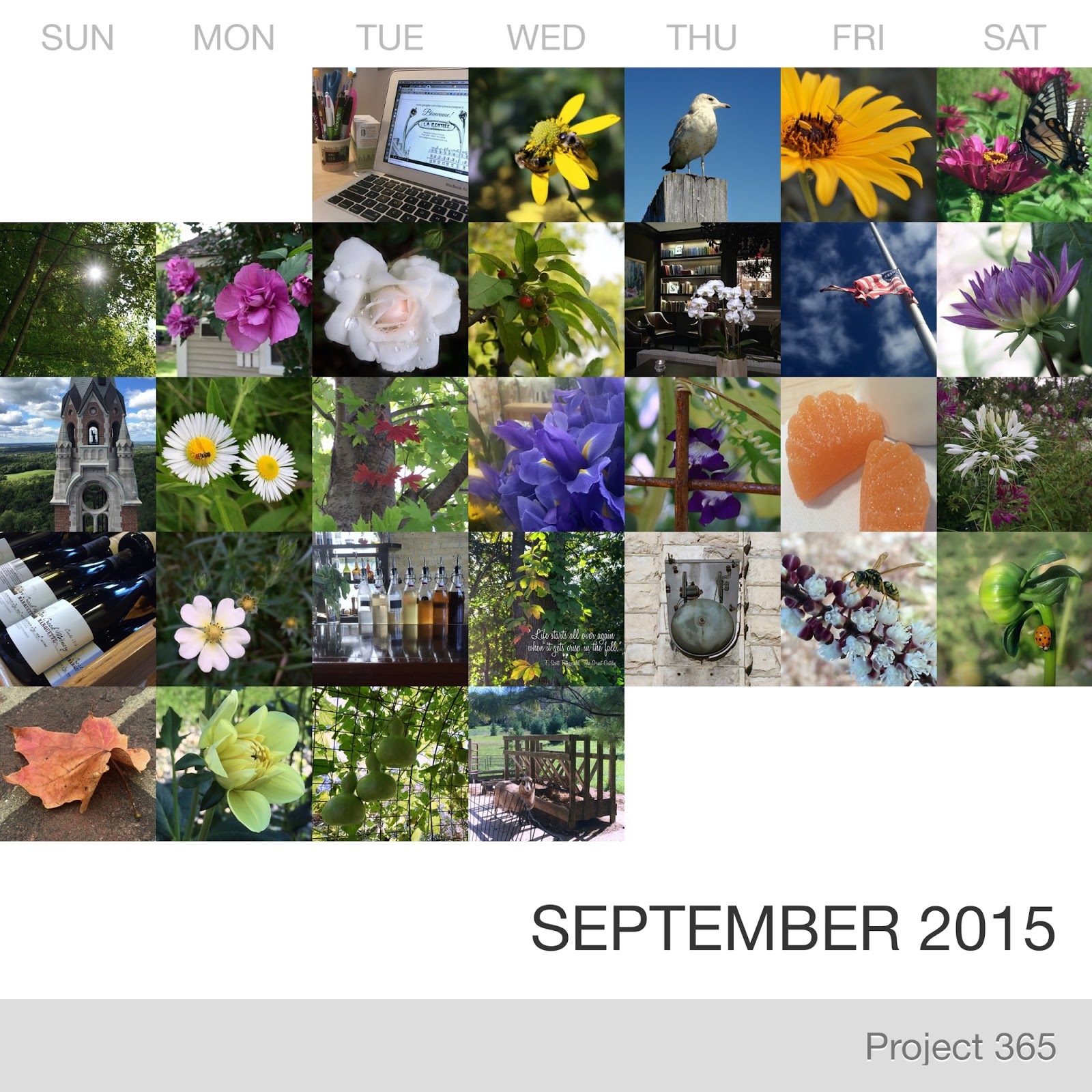 Project 365 _September-2015_Collage.jpg