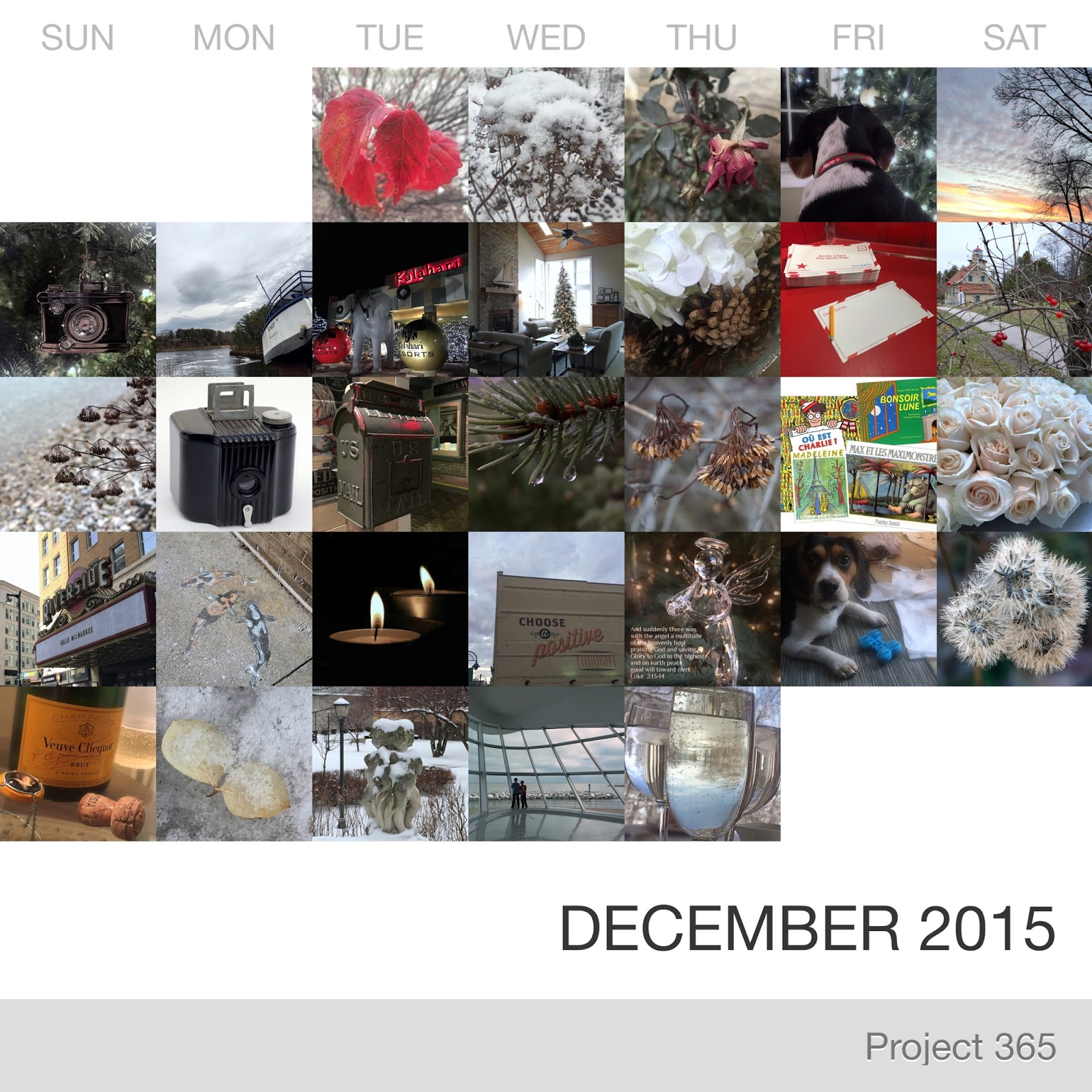 Project 365 _December-2015_Collage.jpg