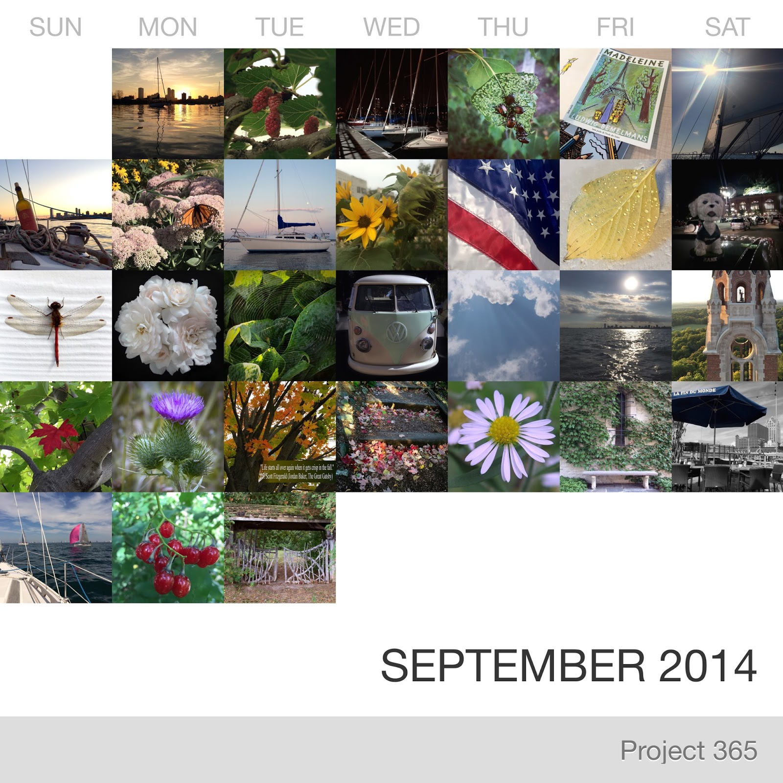 Project 365 _September-2014_Collage.jpg