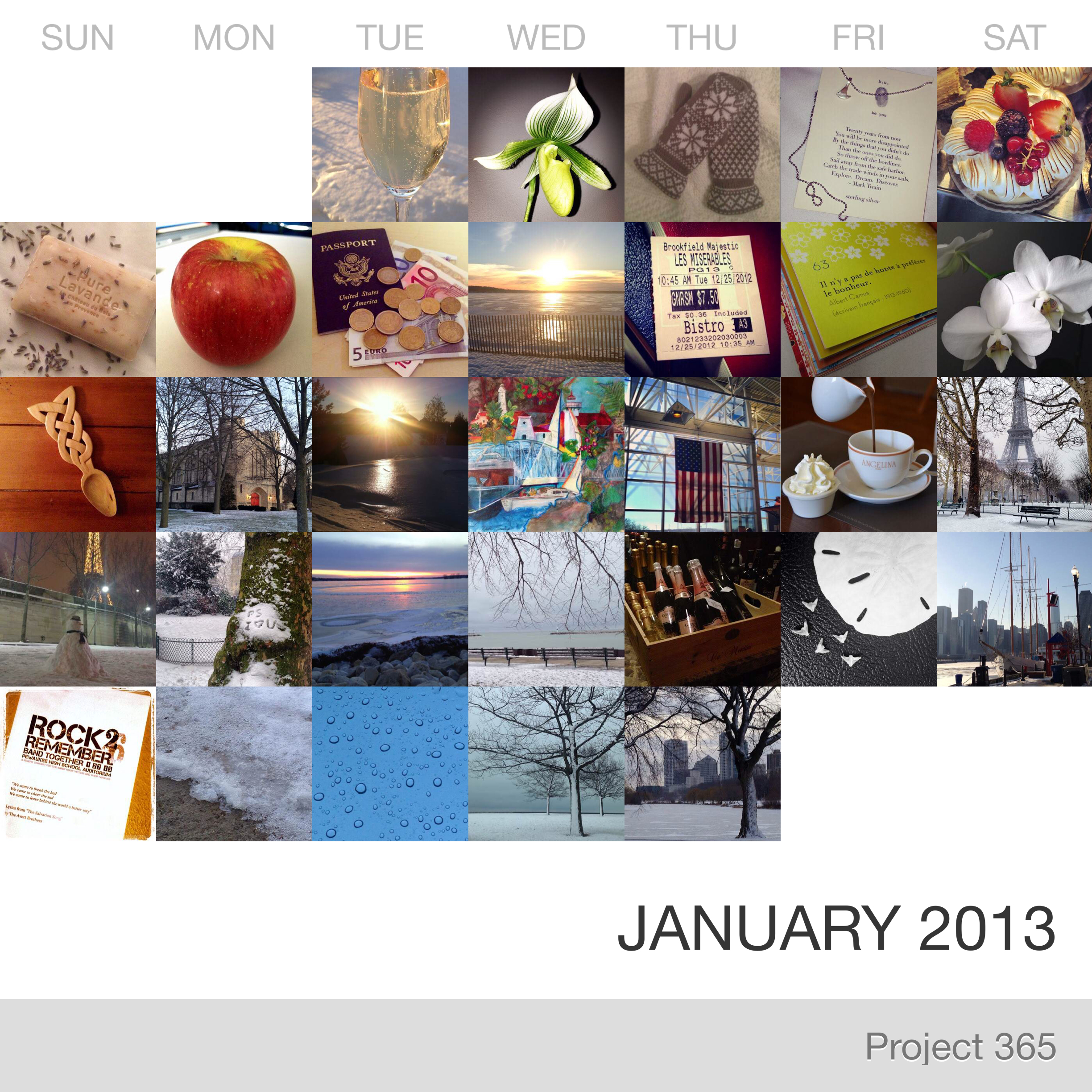 Project 365 _January-2013_Collage.jpg