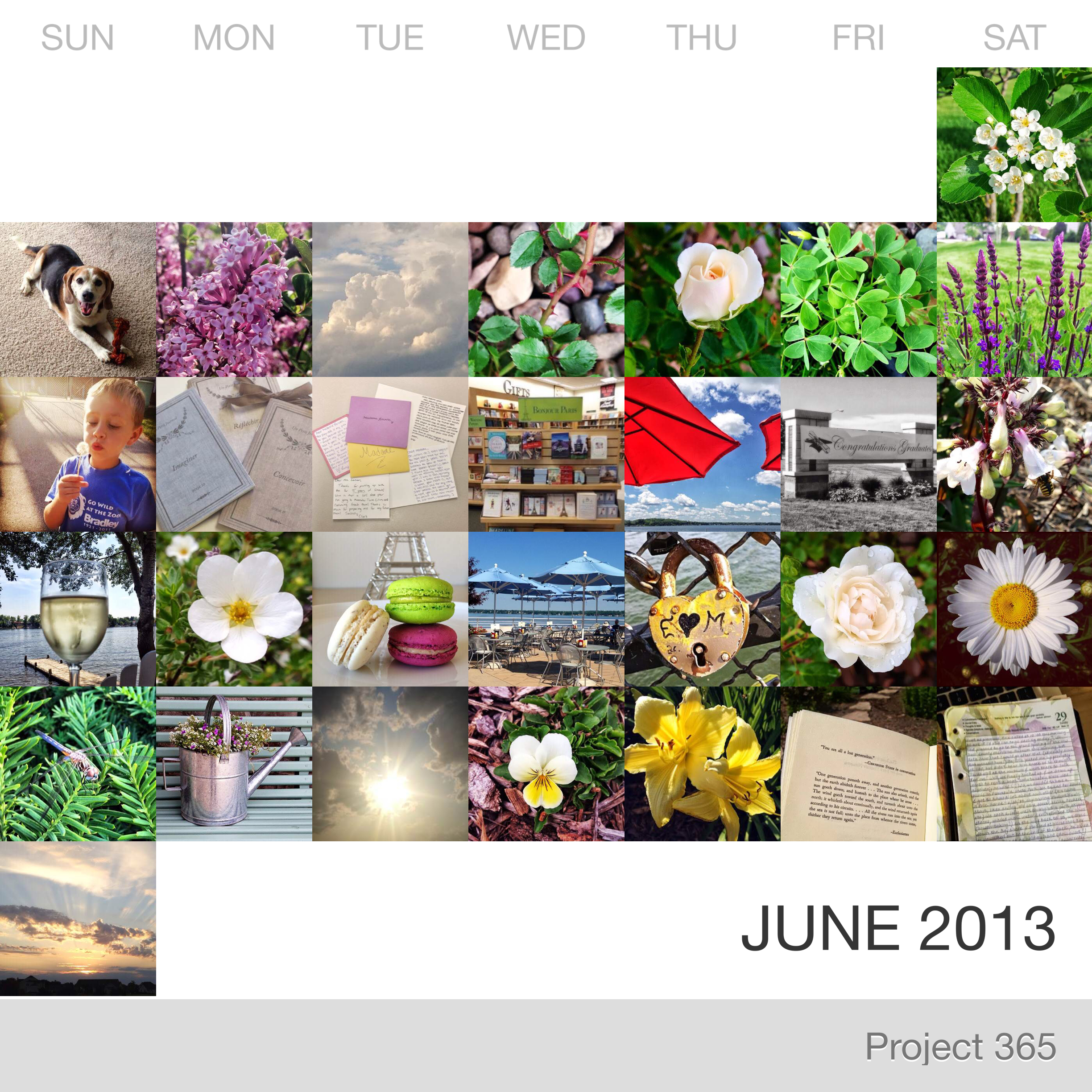 Project 365 _June-2013_Collage.jpg