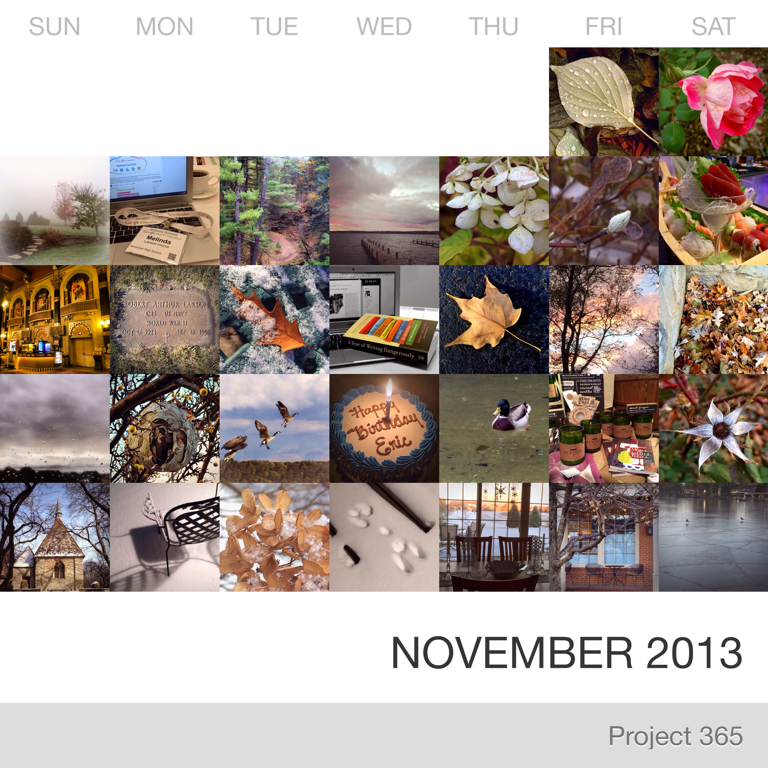 Project 365 _November-2013_Collage.jpg