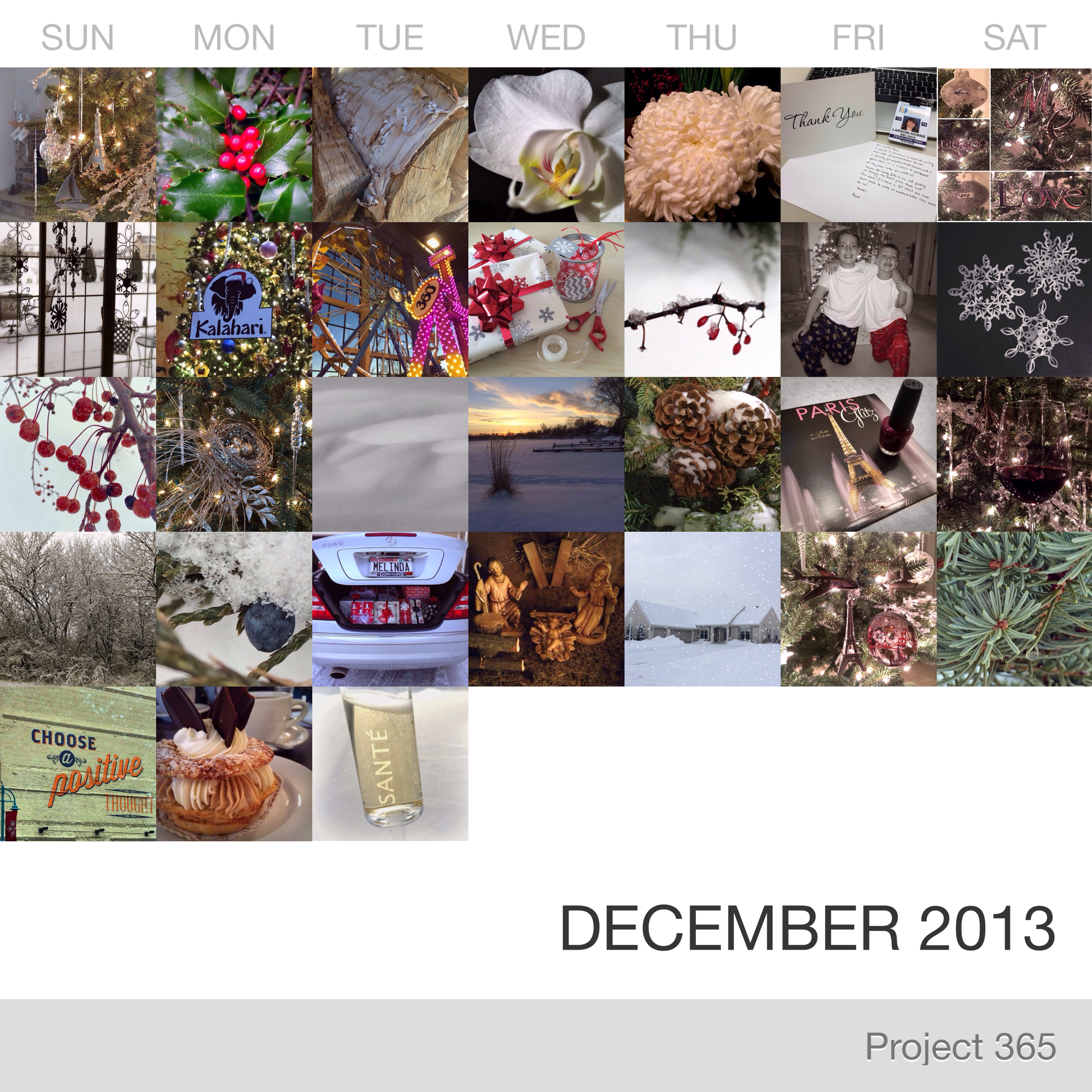 Project 365 _December-2013_Collage.jpg