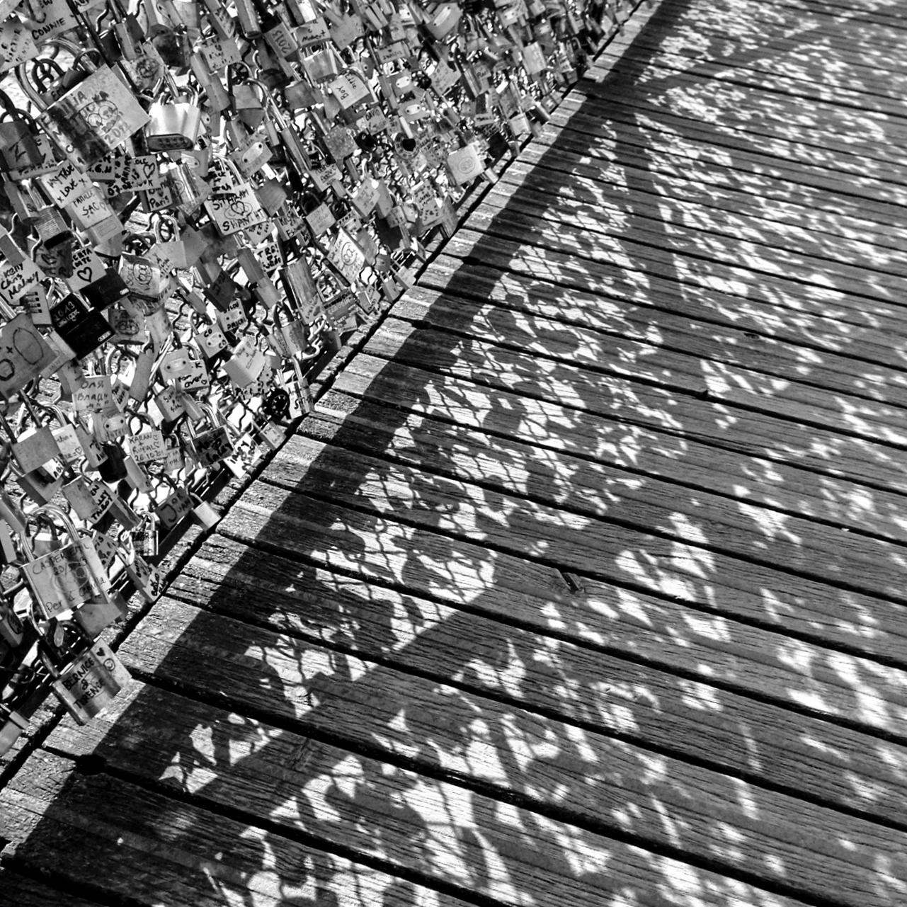 shadows - spring 2013.jpg