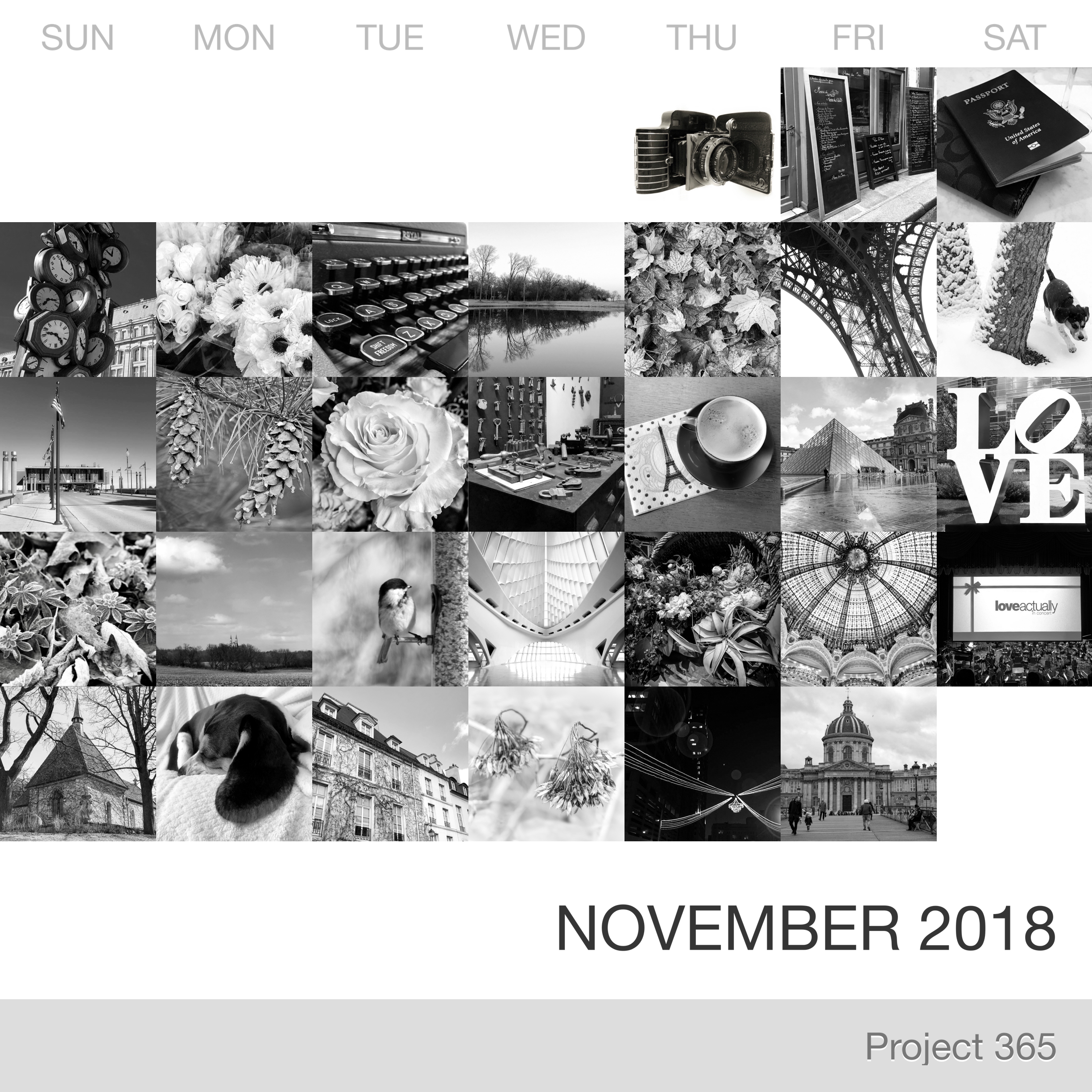 Project 365 _November-2018_Collage.jpg