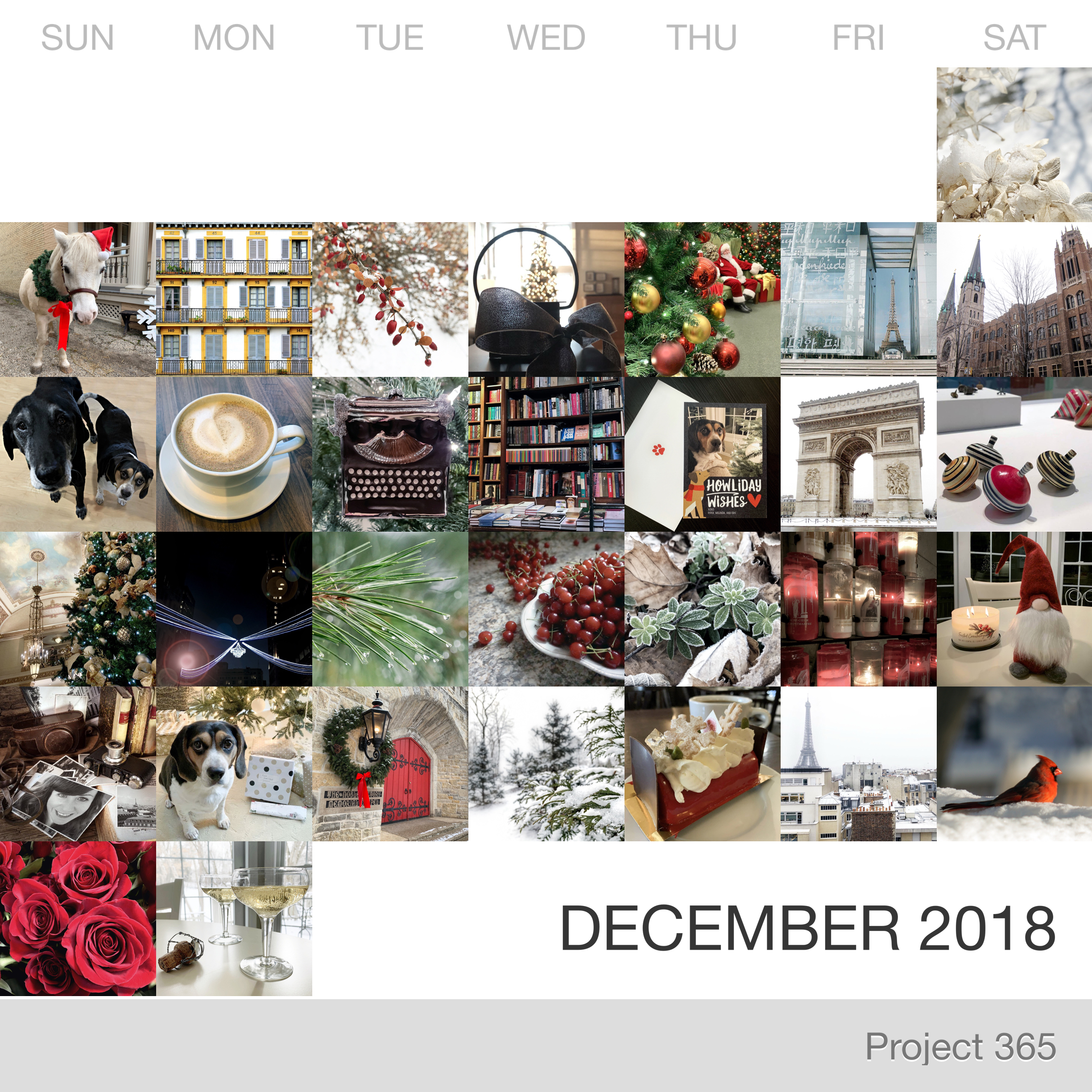 Project 365 _December-2018_Collage.jpg