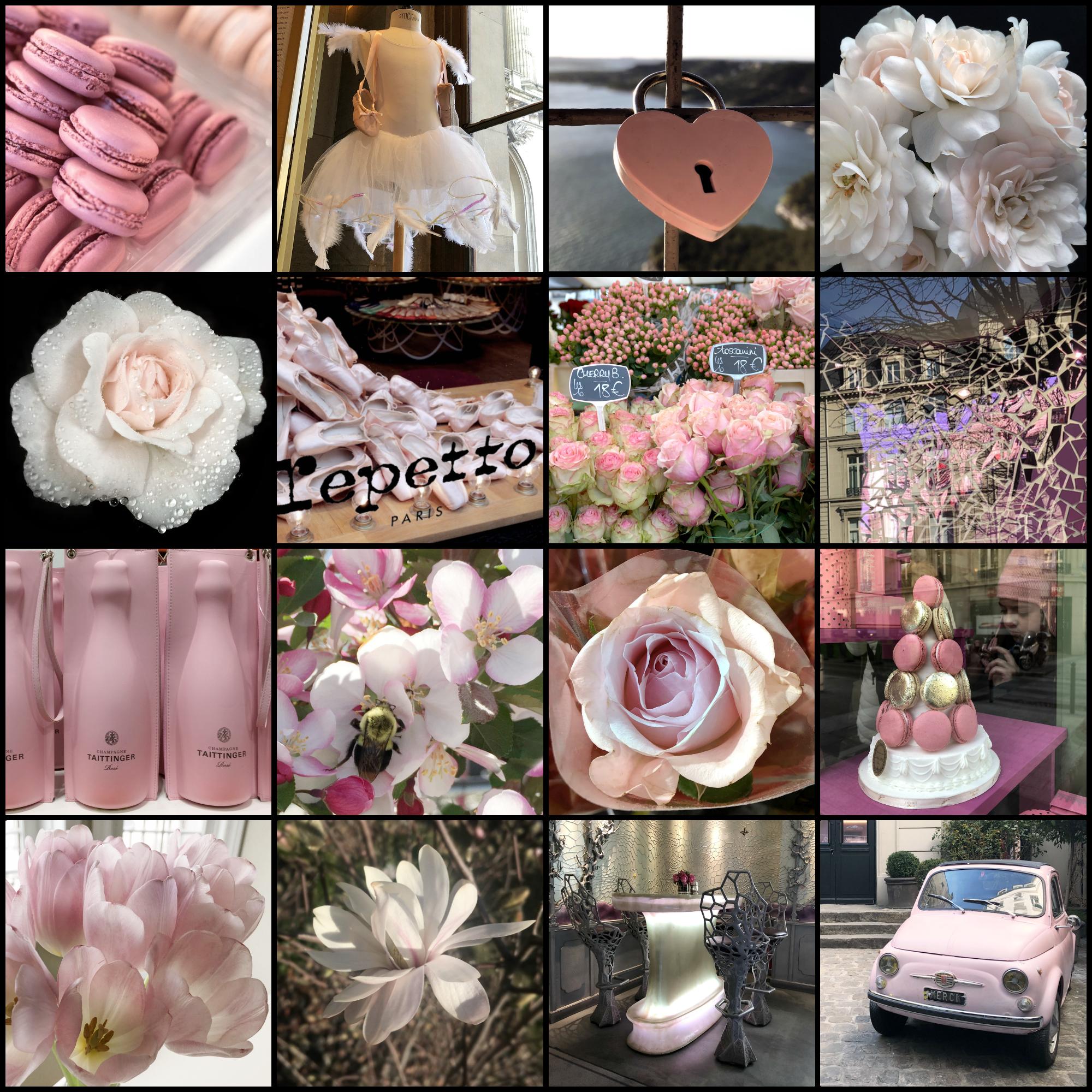 la vie en rose | pink
