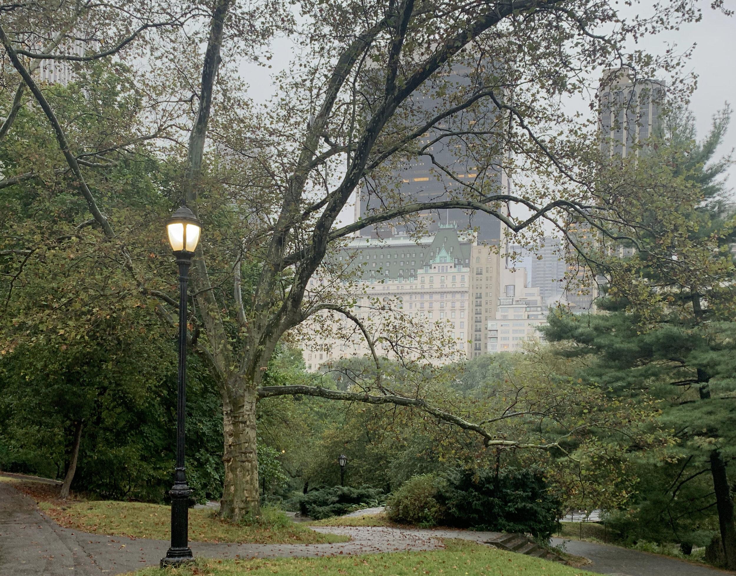 Central Park - Plaza Hotel
