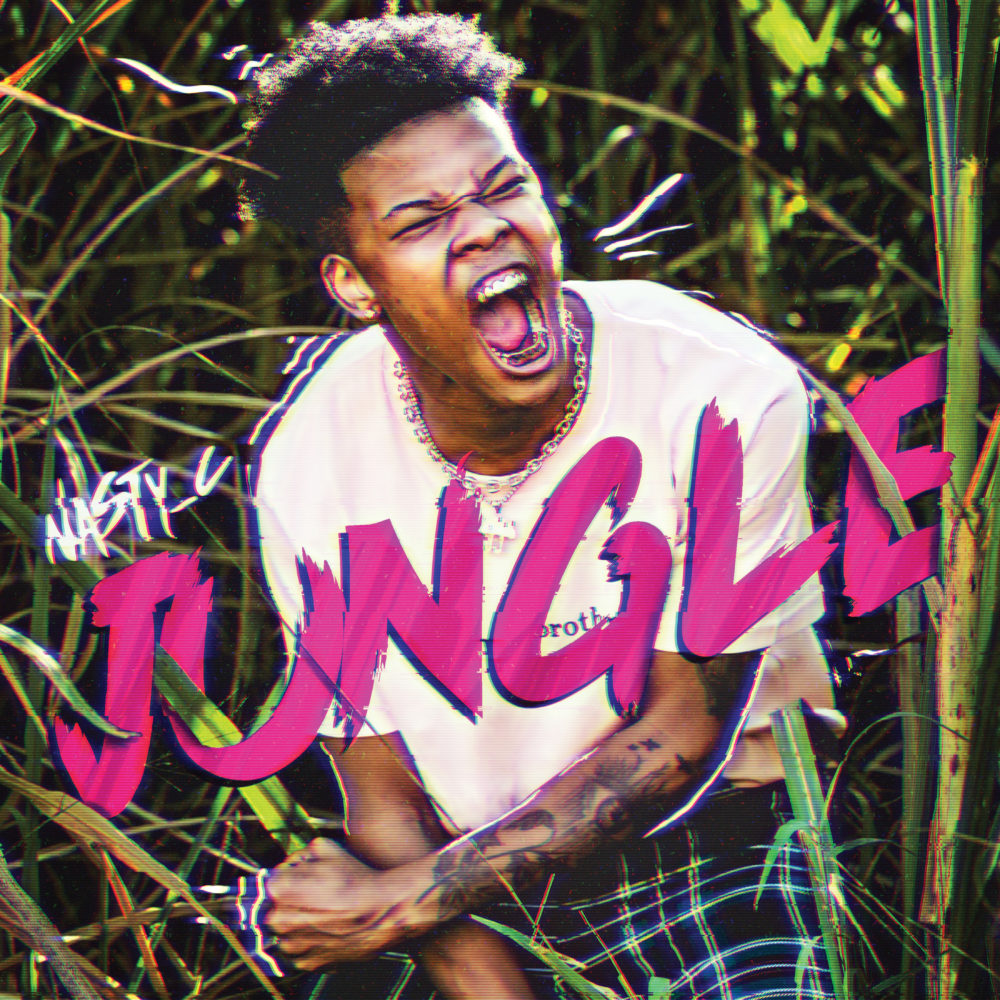 Nasty-C-Jungle-Artwork-Glitch-RGB-e1532183722134.jpg