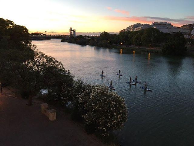 Sevilla you beauty 💃🏻🌴🍹🇪🇸