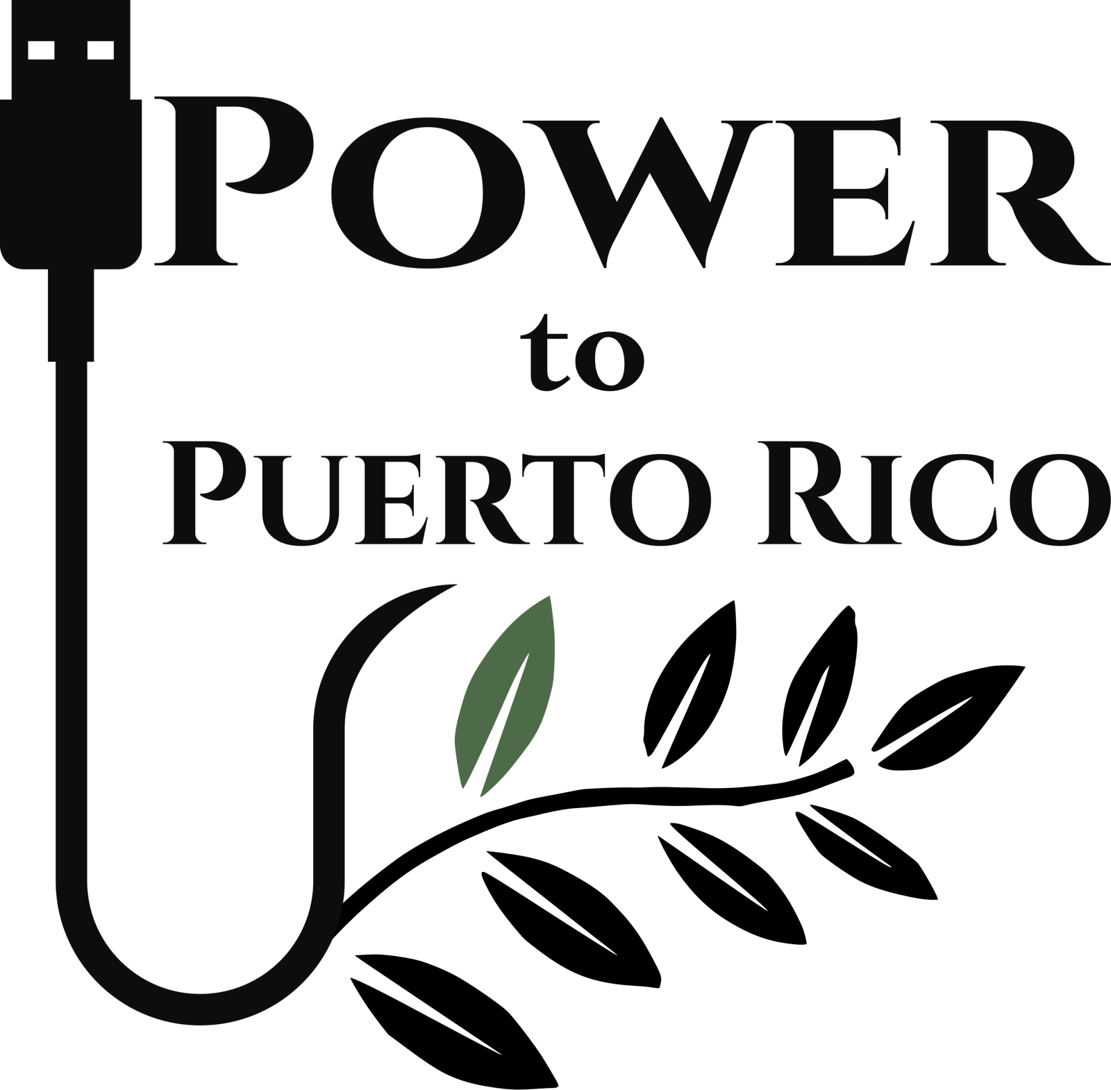 Logo for Power To P. R. Corp.