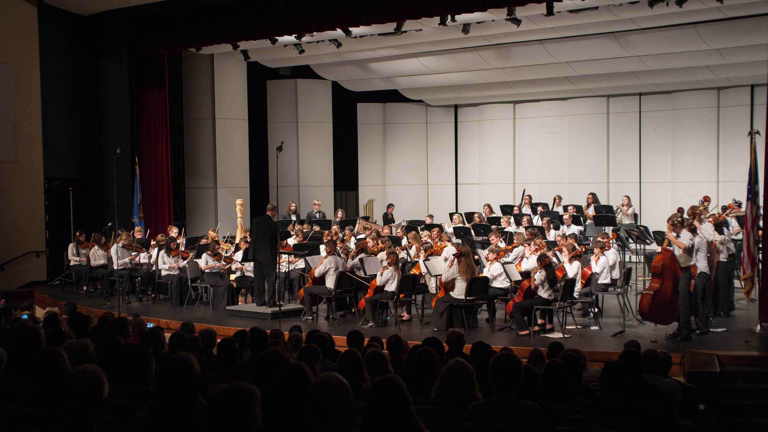 Concert Orchestra 2015